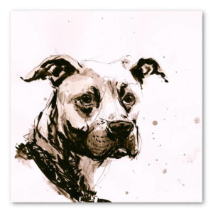 Pet portrait of Tank the dog